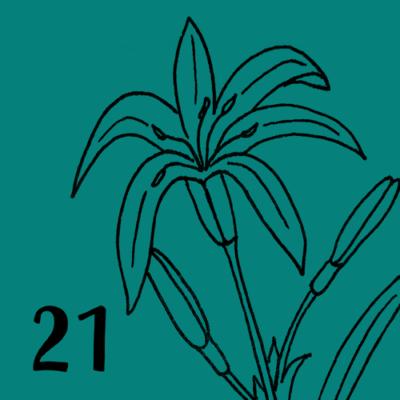 tag-21-kachel
